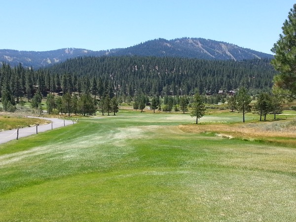 TAHOE COUPONS - Discount Coupons, South Lake Tahoe