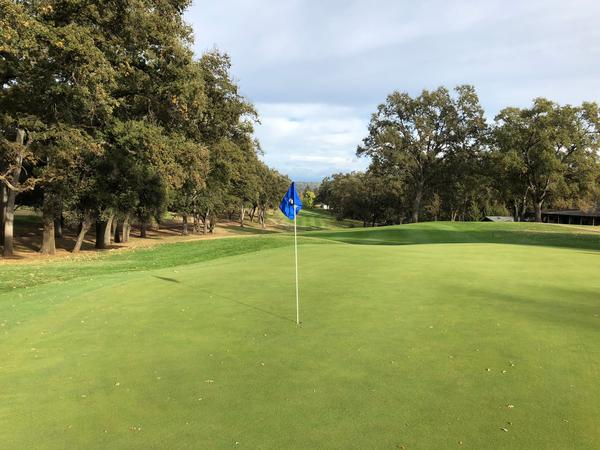 Pine Mountain Lake Golf Club Details and Information in ...